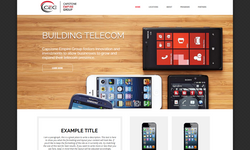 WEBSITE CONCEPT SAMPLE 333 - Copy (2).PNG