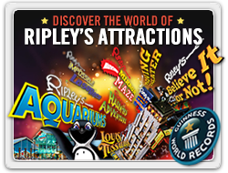 Ripleys attractions-banner-250.png