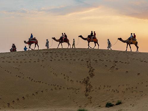 Jaiselmer, Thar Desert: Camel Safari
