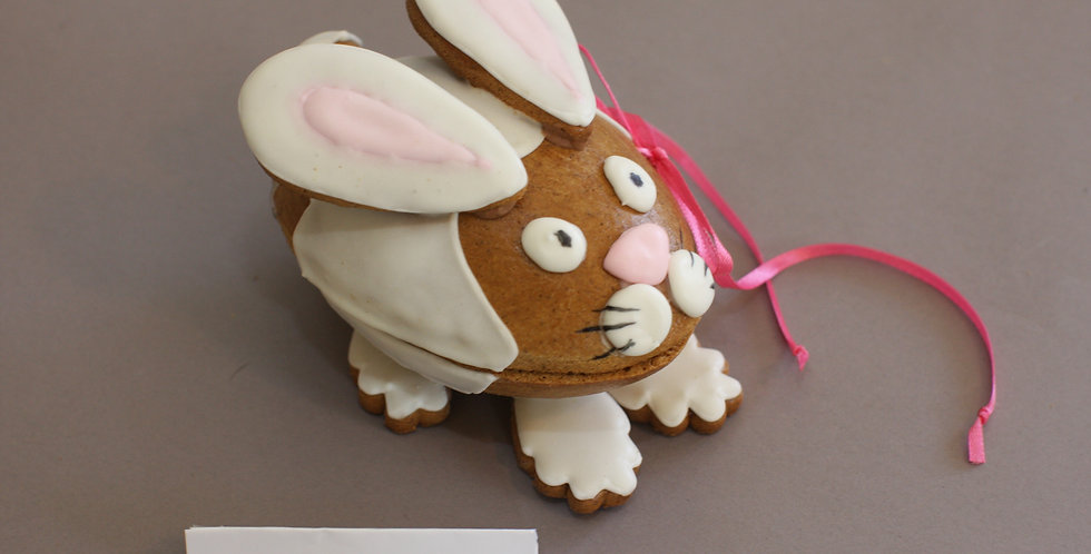 3D Bunny (openable)