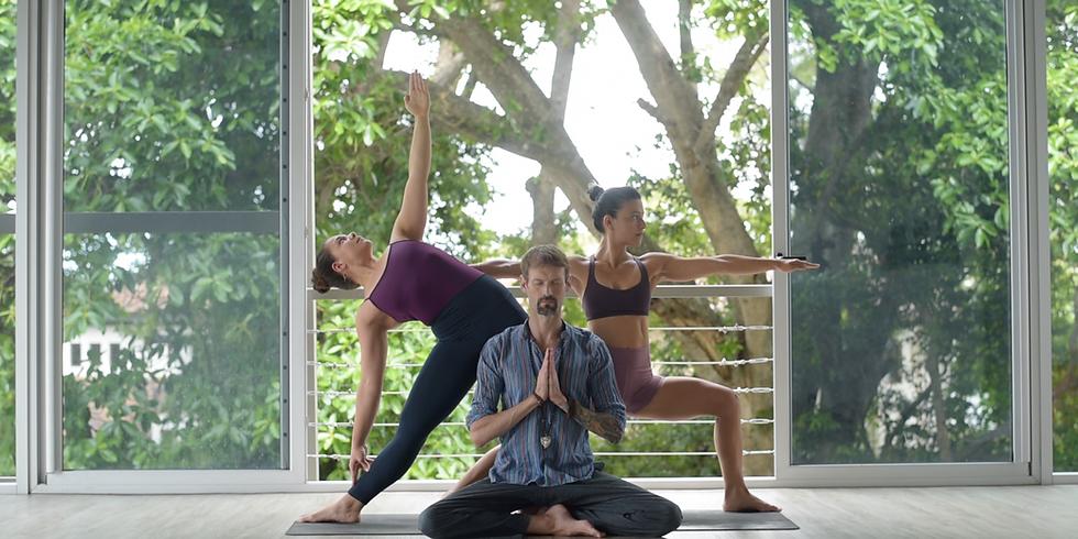 Programa de Formación Integral para Profesores de Yoga 295 Hrs