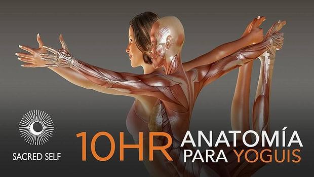 Anatomía para Yoguis Banner.jpg