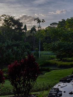 MacawLogde- Sky - fotosbyboca