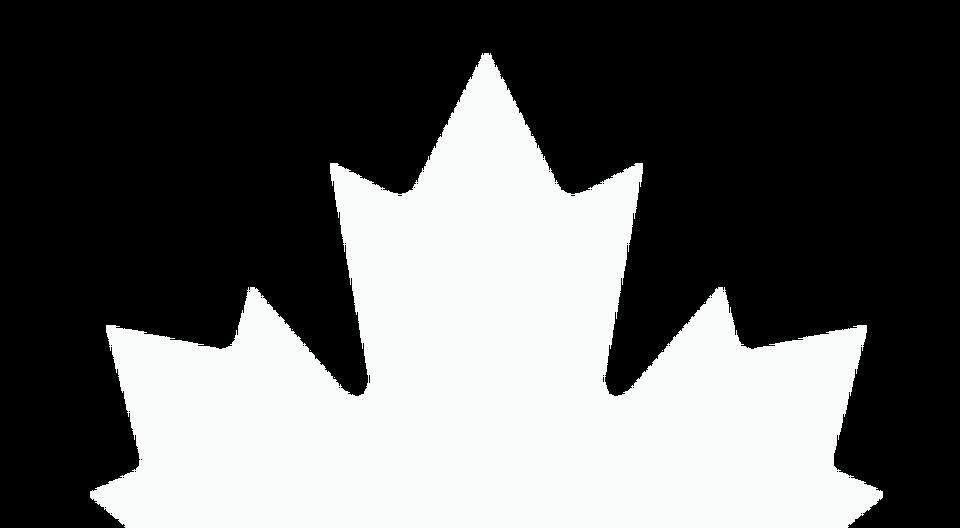 MapleLeafWhiteTopTranslucent.png