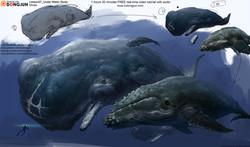 Lesson07_whale_arrange_small