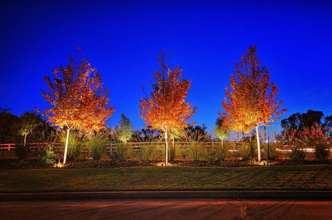 Exterior LED Landscape Lighting (7).jpg