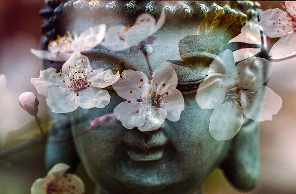 buddha-1279902_1920.jpg