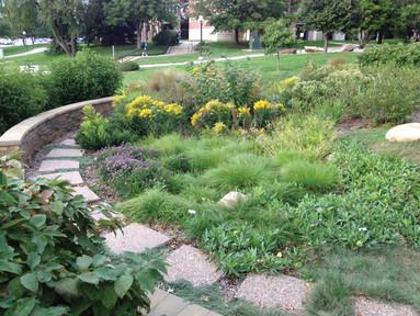 Bioretention (3).jpg