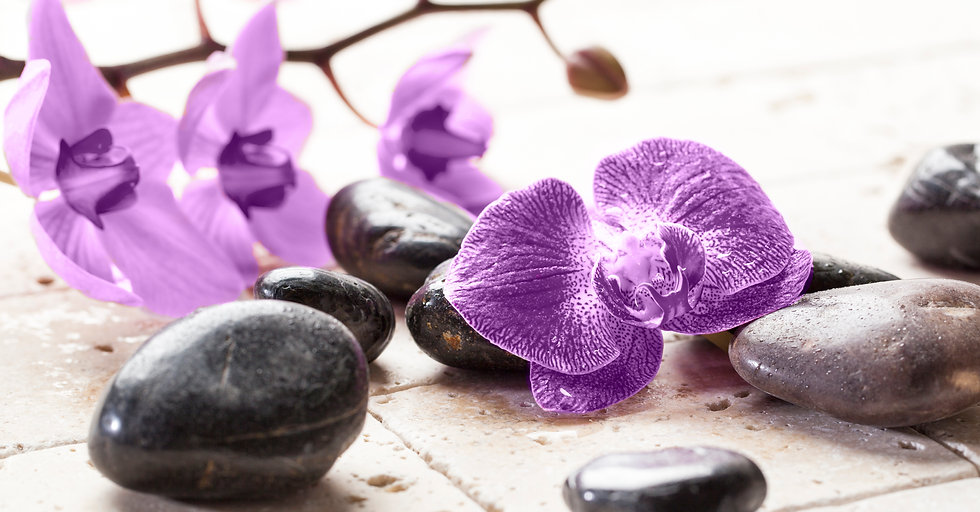vecteezy_zen-femininity-with-orchid-flow