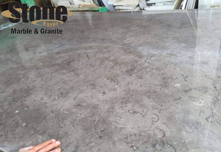 Melly Grey fossils Slabs polished