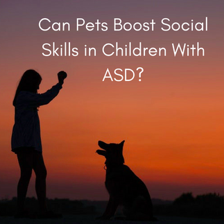 Can Pets Boost Social Skills in Children With ASD?