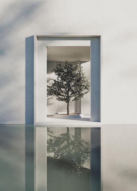18 -- reflections.jpg