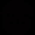 bapac_black_transparent.png