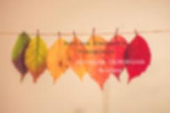 Colorful%20Leaves_edited.jpg