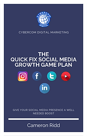the Quick fix social media growth game p
