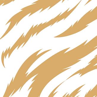 Tiger-print.png