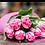 Thumbnail: Tulipani