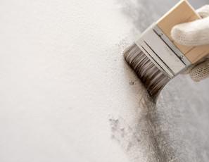 white cement application.jpg