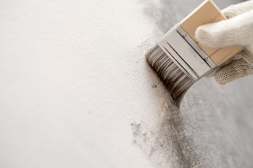 Applying of one coat of White cement