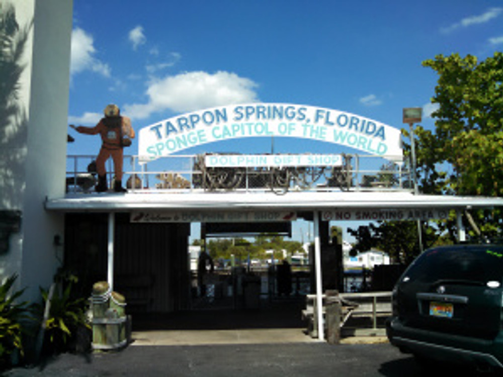Welcome to Tarpon Sprtongs