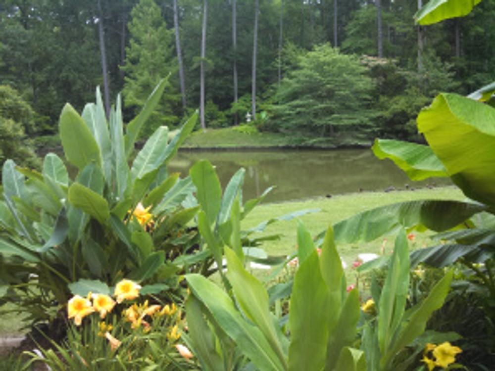 Duke Gardens1