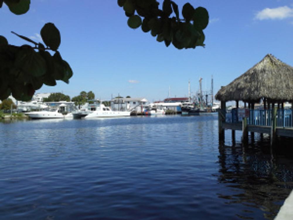 Tarpon Sprongs Harbor