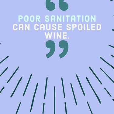 Winemaking Sanitation Tips