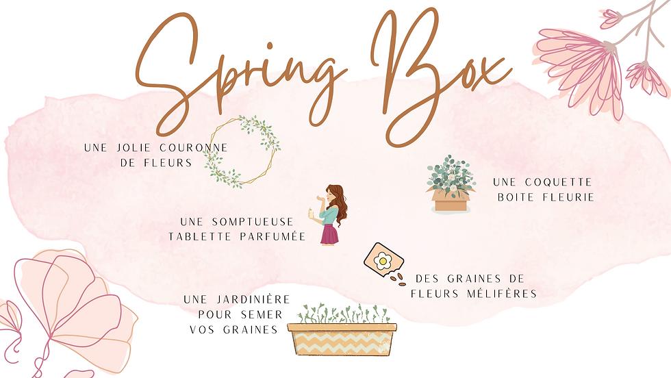 site internet spring.png
