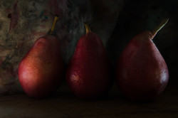 The Still Lives of Pears