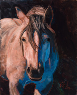 A Horse of  a Differnt Color 16x20