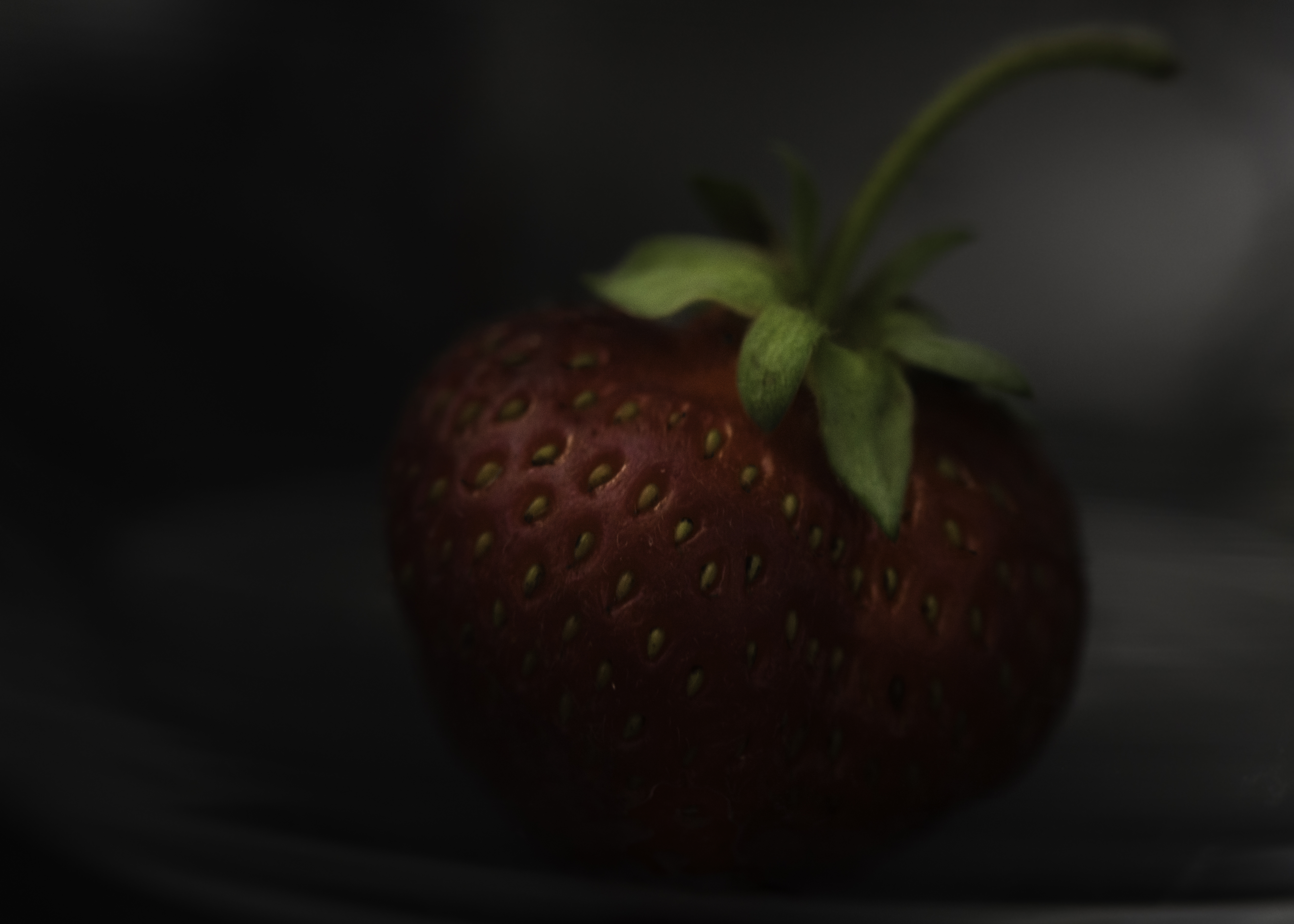 THE ART OF BEING A BERRY