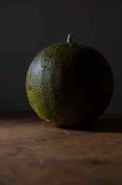 The Art of Melon