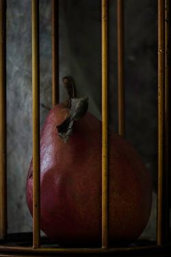 Enrapture  (the pear drama-987)