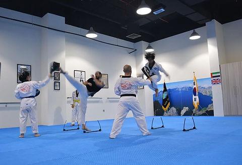 Taekwondo fitness
