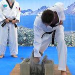 Adults Taekwondo