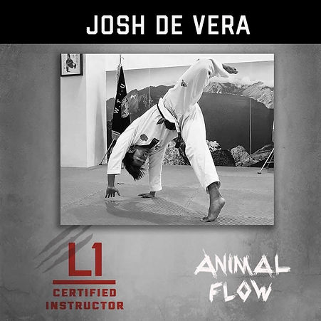 Animal Flow Instructor Josh