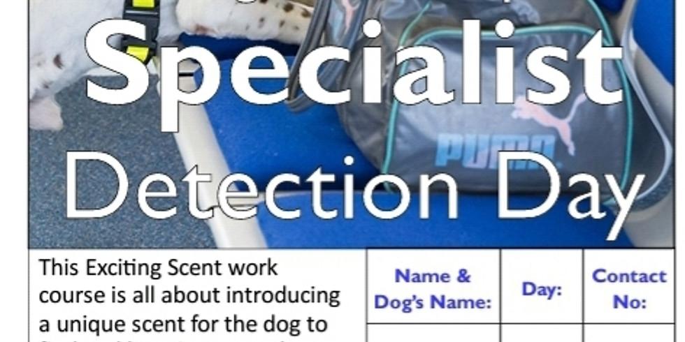 Specialist Detection