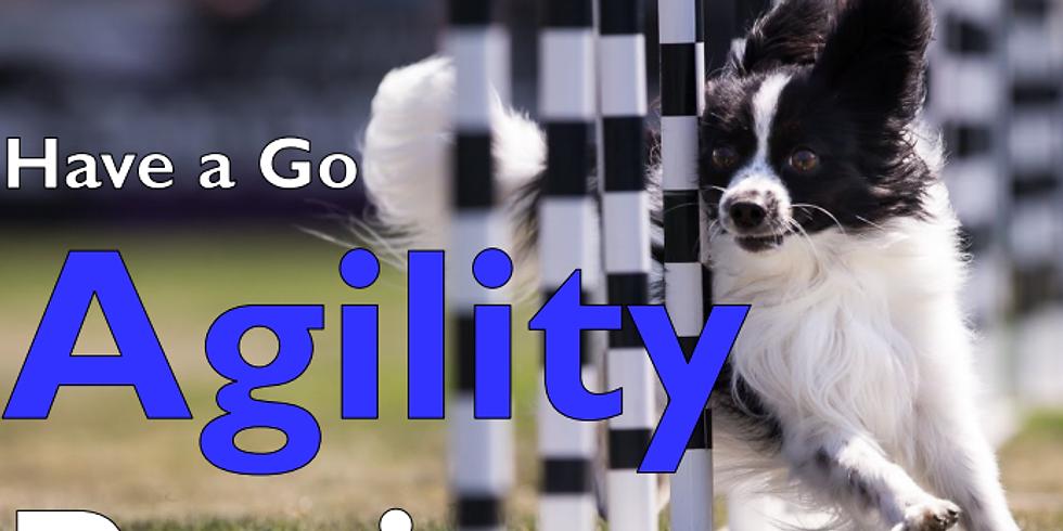Have a Go - Beginners Agility