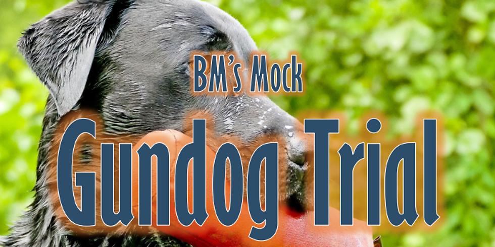 Mock Gundog Trial Competition