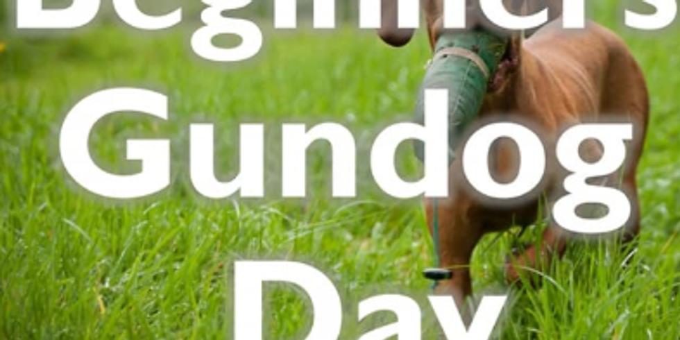 Beginners Gundog Day
