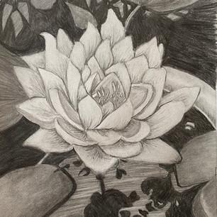 pencil3.jpeg