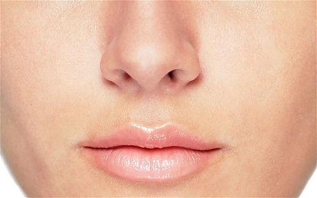 1-nose.jpg