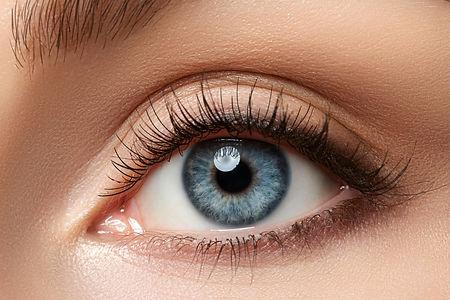 1-Eyelid.jpeg
