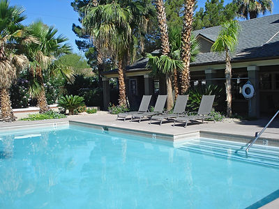 Clean Backyard Pool with Palm Trees