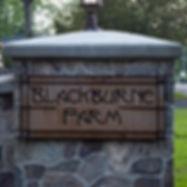 Blackburne Famr Sign homesign.jpg