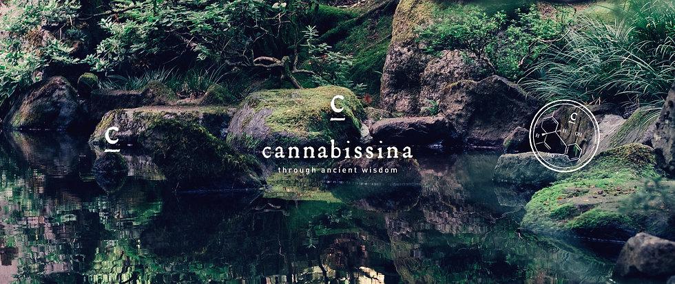 cannabissina-logo-design-packagings-bran