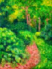 Exbury Gardens Green Pathway.jpg