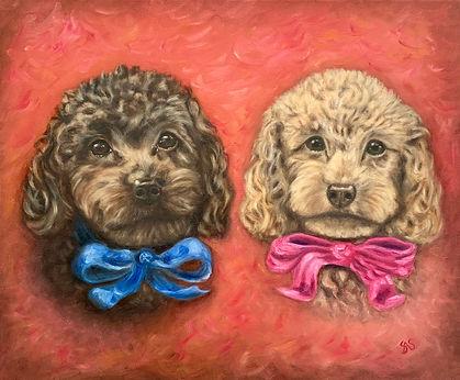 Two dogs pet portrait