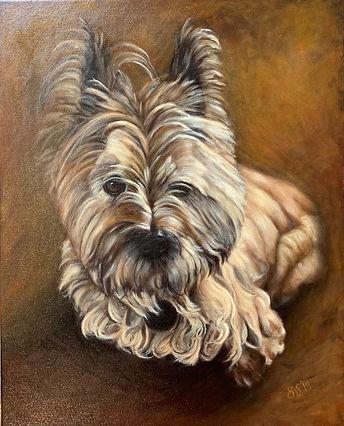 Pet Portrait dog