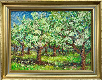 Orchard - apple treesin blossom (2).jpg